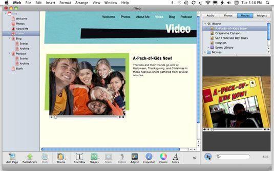 Visualizar o vídeo no Media Browser antes de adicionar a página do filme.