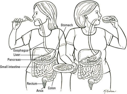 O corpo processa uma dieta livre de trigo diferente do que ele processa uma dieta padrão. [Illust
